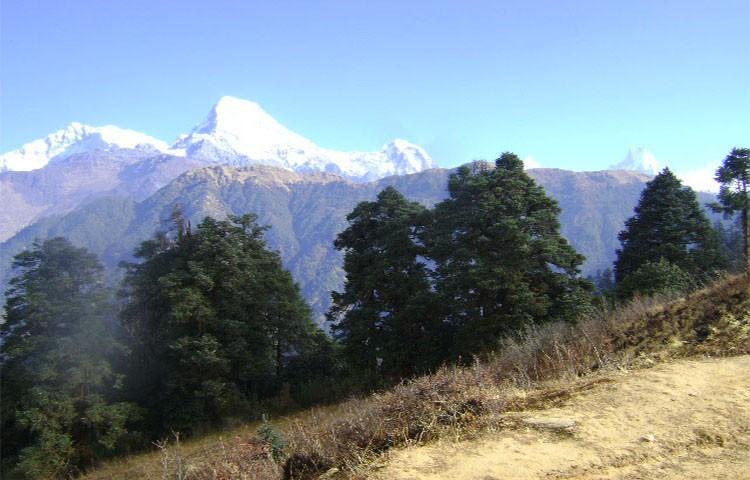 ghorepani-poon-hill-trek1567762846.jpg